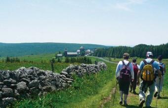 Au cœur du plateau, les randonneurs rejoignent Aubrac par la voie Podiensis.