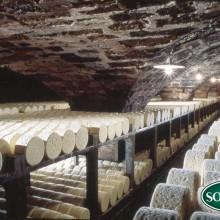 L'histoire du roquefort s'est écrite en partie dans les caves Société, les plus anciennes aménagées dans des éboulis du Comablou.