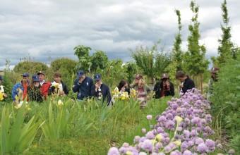 L'arboretum propose une belle sélection de végétaux typiquement méditerranéens.
