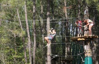 Cette forêt constitue un cadre magnifique, idéal pour s'amuser en famille.