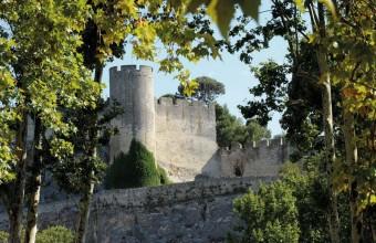 Le château de Beaucaire fut une des plus puissantes forteresses du Midi.