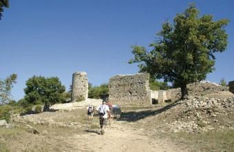 Le camp de César. Cette ancienne ville antique s'étend sur dix-huit hectares.