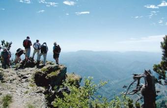 Des activités de pleine nature renouvelées pour (re)découvrir le massif de l'Aigoual.