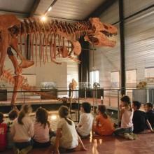 A Dinosauria, l'histoire de la terre expliquée aux enfants de manière ludique.