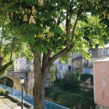 Rennes-les-Bains est l'unique station thermale du département audois.