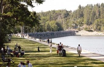 Il fait bon vivre sur les plages ombragées du barrage de Saint-Ferréol.