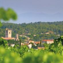 La viticulture et le rugby à XIII sont deux passions qui ont forgé l'identité et l'histoire de la ville.