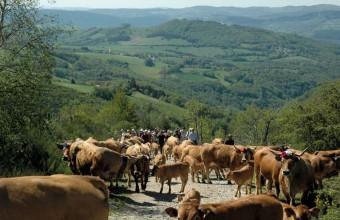 Ici, l'agropastoralisme a conduit l'Unesco à classer plus de la moitié du département au Patrimoine mondial.