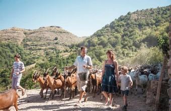 Goûtez à l'authenticité d'une ferme cévenole, avec son troupeau de chèvres et sa fabrique de pélardons.