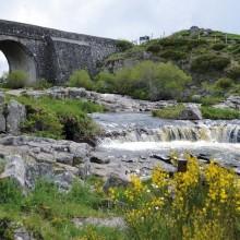 Le pont des Nègres et ses prismes basaltiques baignés par la rivière des Plèches aux farios bien sombres.
