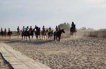 Parcourez les longues plages de sable fin du littoral à dos de cheval, d'âne ou de poney.