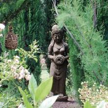Niché en plein cœur des Aspres pousse le Jardin d'Éole.
