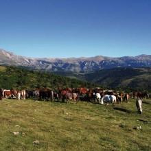 Lamanère est entouré d'un beau cercle de montagnes.