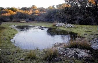 La réserve s'est développée sur les vestiges d'un ancien volcan.