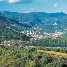 Les thermes de Lamalou-les-Bains ont attiré les personnalités du monde politique, militaire et culturel.