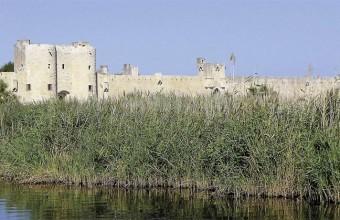 La ville d'Aigues-Mortes, aux remparts si bien conservés, propose un programme estival entre Histoire, traditions et nombreuses animations