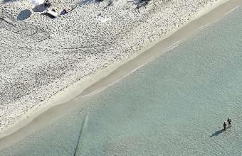 La plage de l'Espiguette, un espace superbe, sauvage et fragile.