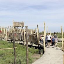 Le sentier d'interprétation, qui s'étend sur 1,6 km, permet de découvrir une faune et une flore uniques