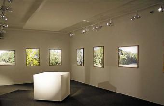 La Collection Desnoyer, fer de lance culturel de Saint-Cyprien.